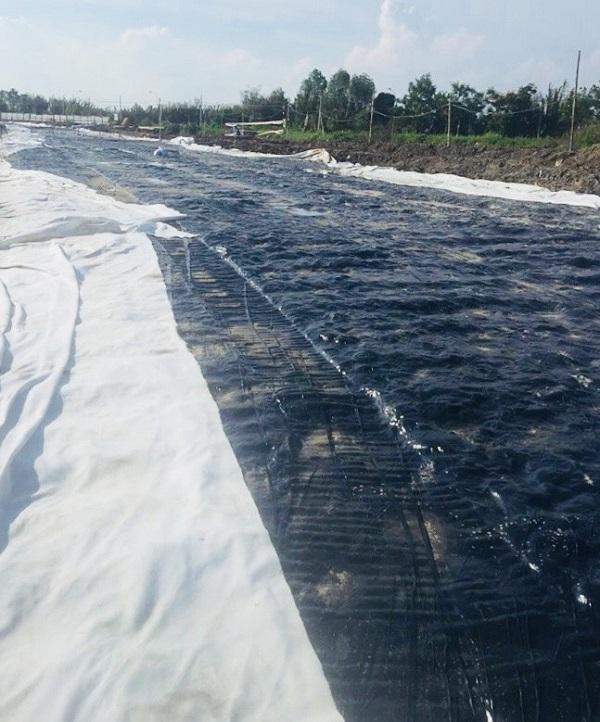 Toàn cảnh trải vải địa kỹ thuật TS40 thi công đường nhựa tại Đồng Tháp